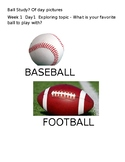 Ball Study Question of Day Pictures