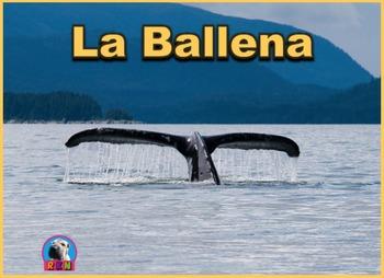La Ballena - Presentación en PowerPoint y Actividades