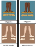 Ballet Positions and Parts of a Pointe Shoe Montessori Thr