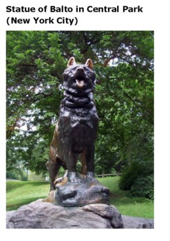Balto, the Dog Who Saved Nome  Word Search