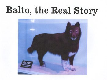 Balto, the Real Story