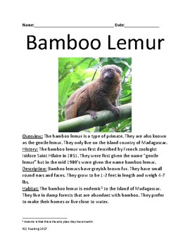 Bamboo Lemur - review article lesson facts information questions worksheet