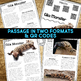 Banded Gila Monster: Informational Article, QR Code Research & Fact Sort