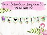 Banderoles tropicales modifiables