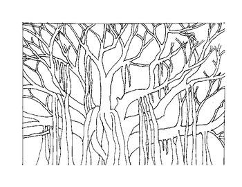 Banyan Tree Coloring Page Freebie