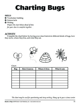 Barker Creek - Bunches of Bugs! Activity Book