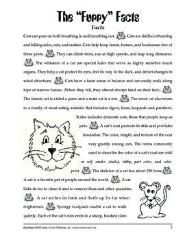Barker Creek - Cat Craze Activity Book