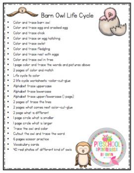 Barn Owl Life Cycle