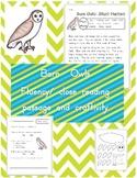 Barn Owls Fluency Passage and Nouns Craftivity
