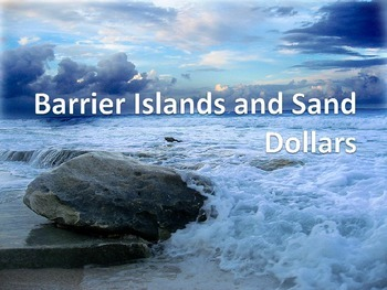 Barrier Islands and the Sand Dollar