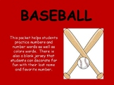 Baseball Jersey practice