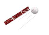 Baseball Standings Activity