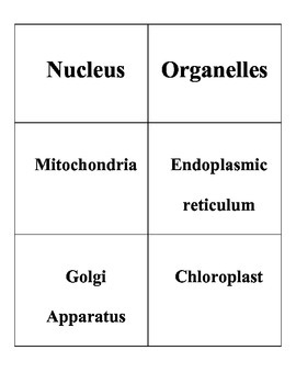 Basic Biological Principals Word Sort and Lesson
