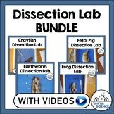 Biology/Anatomy Dissection Bundle: Pig, Frog, Crayfish, Earthworm