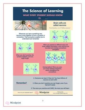 Basic Brain Science