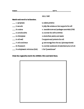 Basic Cell Organelle Test