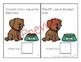 Basic Concepts Interactive Books Bundle