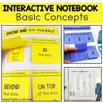 Basic Concepts Interactive Notebook