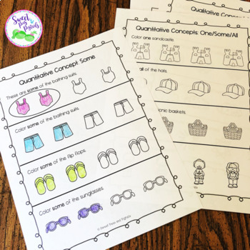 Basic Concepts: Summer Edition {Flashcards & Worksheets}