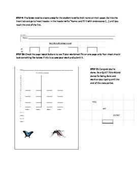 Basic Excel Practice
