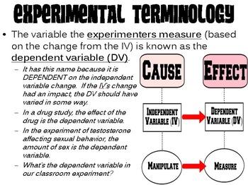 Basic Experimentation PowerPoint