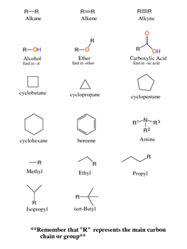 Basic Functional Groups and Hydrocarbons