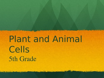 Basic Functions of Cells