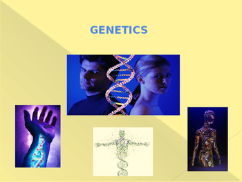 Basic Genetics PowerPoint