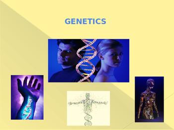 Basic Genetics PowerPoint