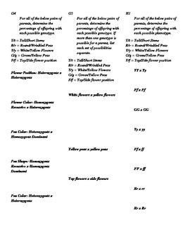 Basic Genetics Practice, Almost 300 Problems!