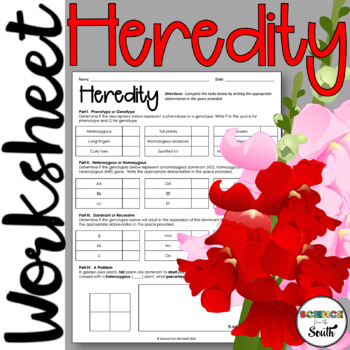 Basic Heredity Worksheet for Review or Assessment
