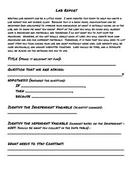 Basic Lab Report