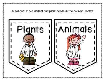 Basic Living Needs of Plants and Animals Pocket Sort