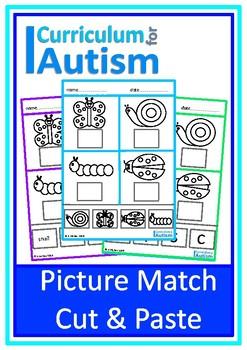 Basic Match Cut & Paste Autism Special Education OT
