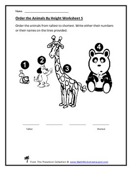 Basic Measurement With Fixed Units Teacher Worksheet Pack