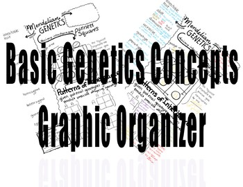 Basic Mendelian Genetics Concept Map