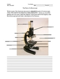 Basic Microscope Parts and Functions