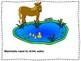Basic Needs of Mammals