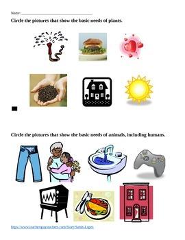 Basic Needs of Plants and Animals