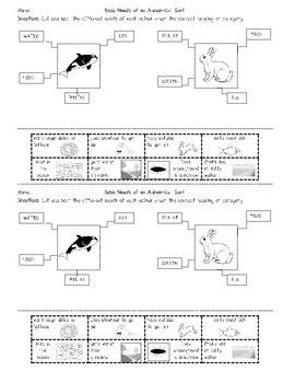 Basic Needs of a Whale & Rabbit--Cut-Sort activity