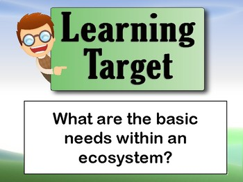 Basic Needs within an Ecosystem