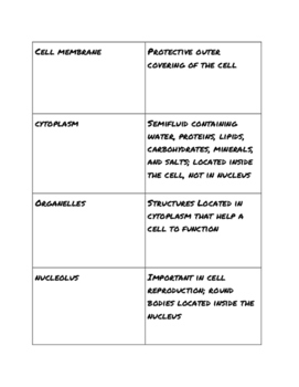 Basic Parts of a Cell Matching Game