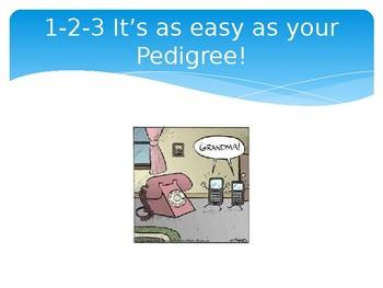 Basic Pedigree Powerpoint