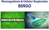 Basic Photosynthesis & Cellular Respiration BINGO Review