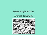 Major Phyla of the Animal Kingdom