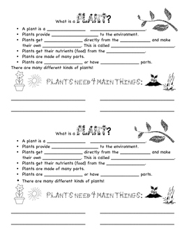 Basic Plants Notes
