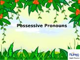 Basic Presentation on Possessive Pronouns