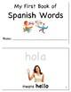 Basic Spanish Words Workbook