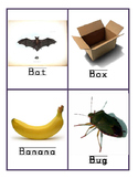 Basic Vocabulary Flash Cards