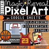 Basketball Madness Digital Pixel Art Magic Reveal ADDITION